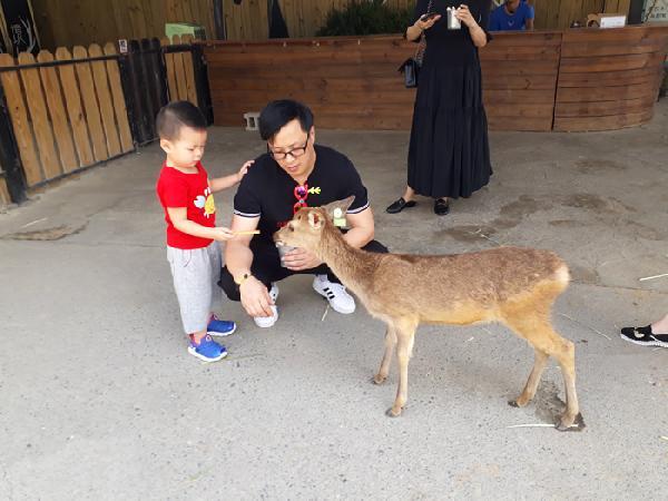 小麗小姐 墾丁自由行-鹿境梅花鹿生態園區