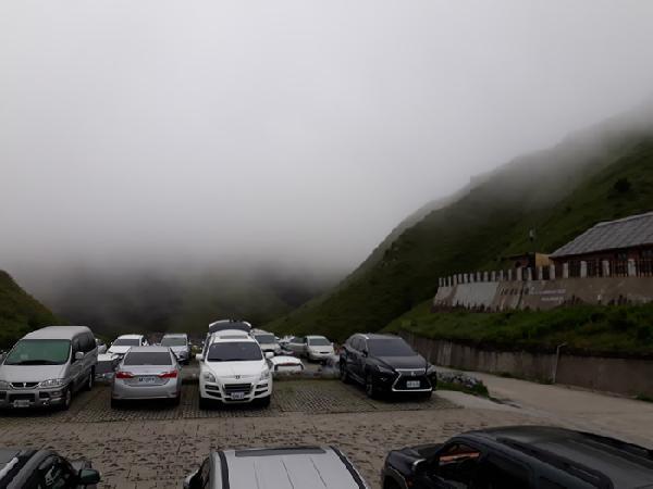 王大哥 清境農場包車旅遊